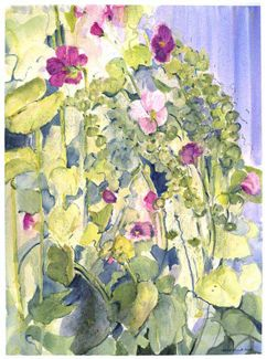 Abundance of Hollyhocks