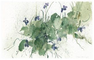 Family of Violets